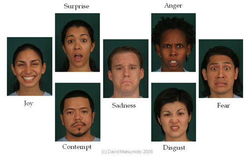 seven-basic-emotions-matsumoto
